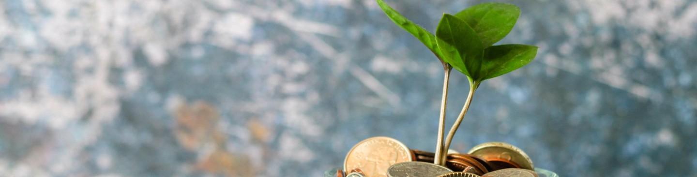 TermoSol- Redukuj koszty z pomocą natury